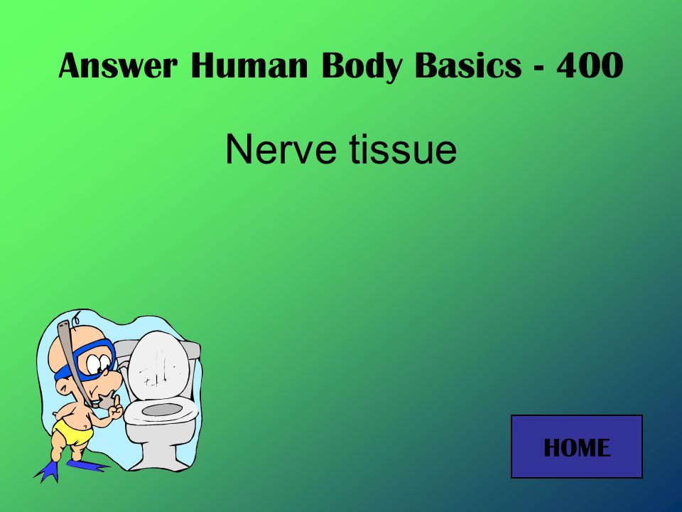 Answer Human Body Basics - 200 Cell HOME