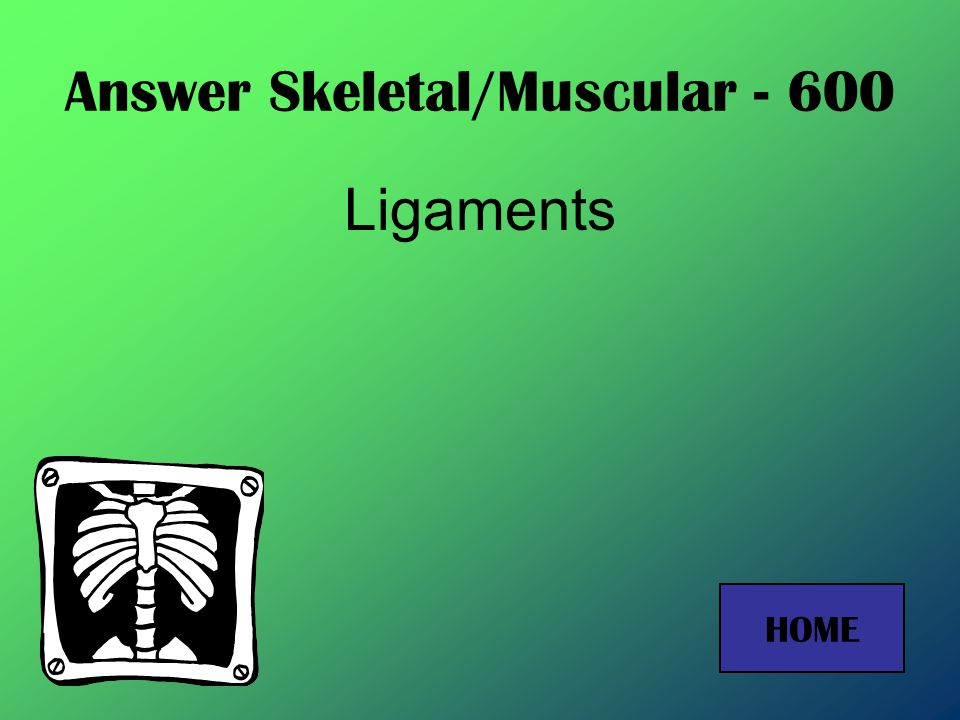 Answer Skeletal/Muscular - 400 Cardiac muscle HOME
