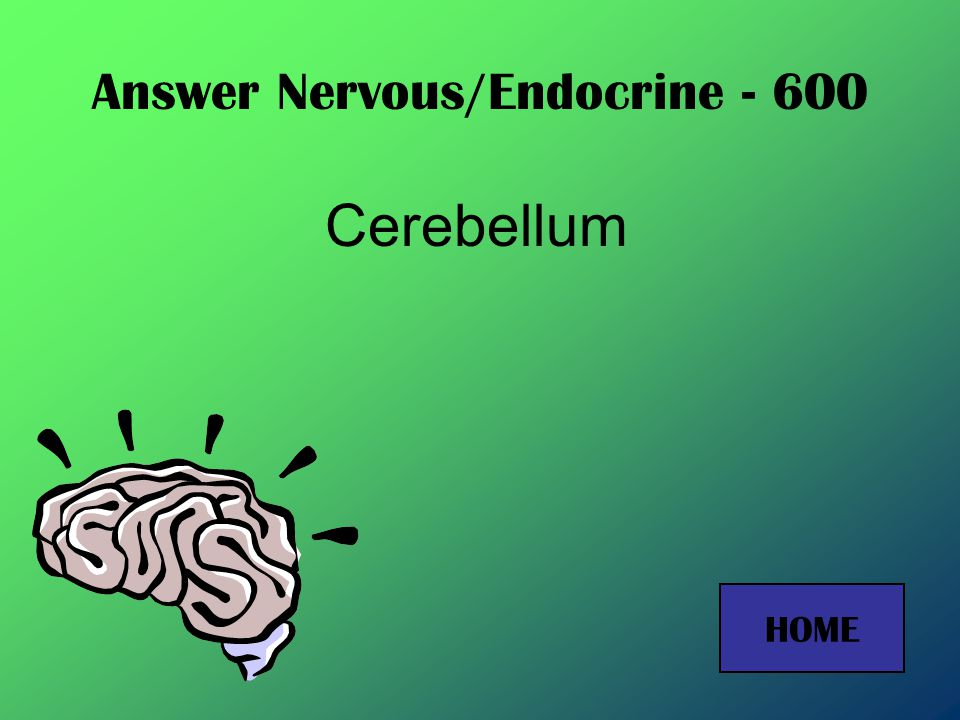 Answer Nervous/Endocrine - 400 Central Nervous System HOME