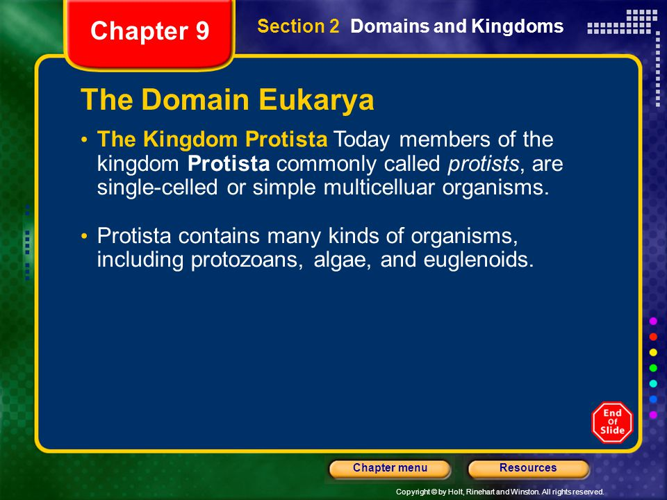 Copyright © by Holt, Rinehart and Winston. All rights reserved. ResourcesChapter menu Chapter 9 The Domain Eukarya The Kingdom Protista Today members