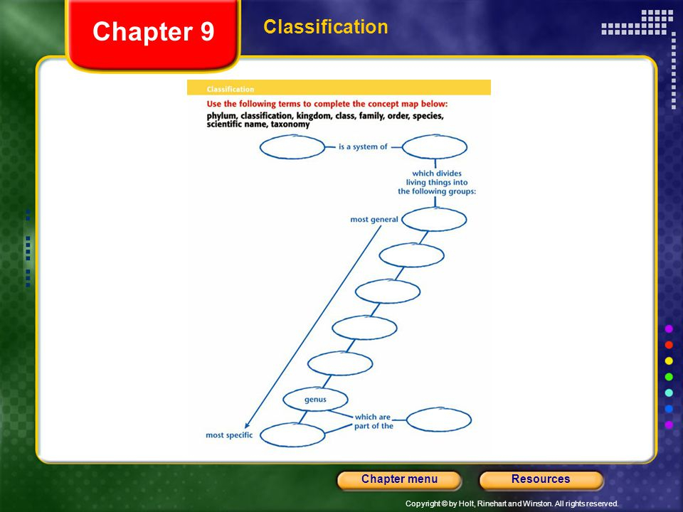 Copyright © by Holt, Rinehart and Winston. All rights reserved. ResourcesChapter menu Chapter 9 Classification