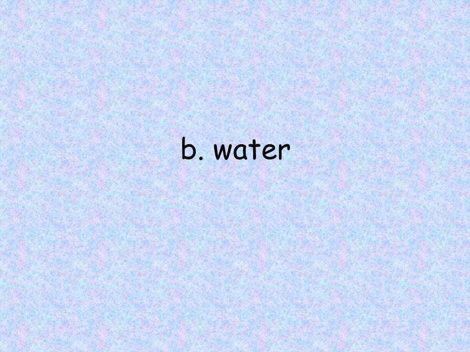 b. water