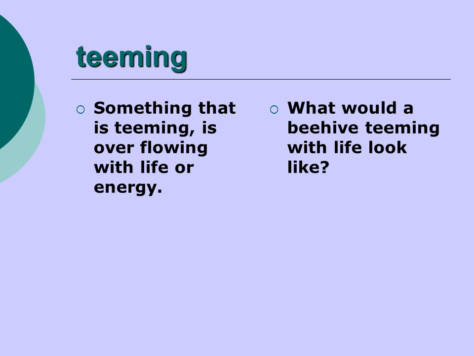 teeming  Something that is teeming, is over flowing with life or energy.  What would a beehive teeming with life look like?