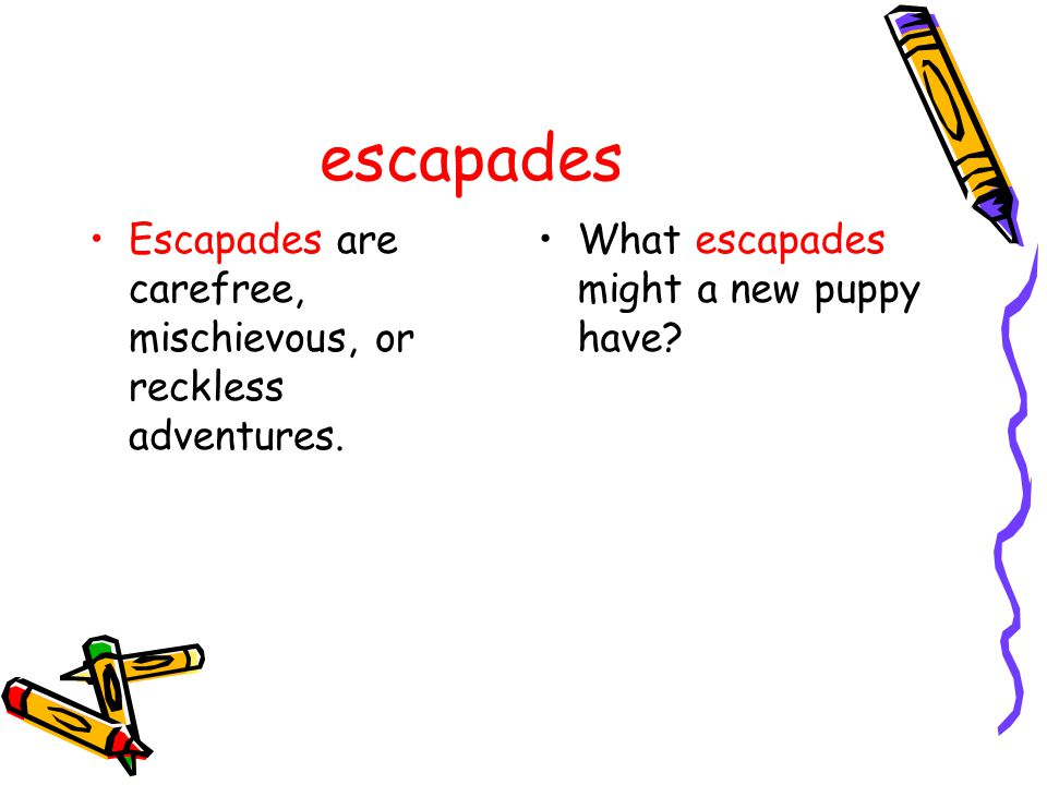 escapades Escapades are carefree, mischievous, or reckless adventures. What escapades might a new puppy have?