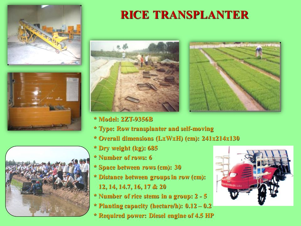 RICE TRANSPLANTER * Model: 2ZT-9356B * Type: Row transplanter and self-moving * Overall dimensions (LxWxH) (cm): 241x214x130 * Dry weight (kg): 685 *
