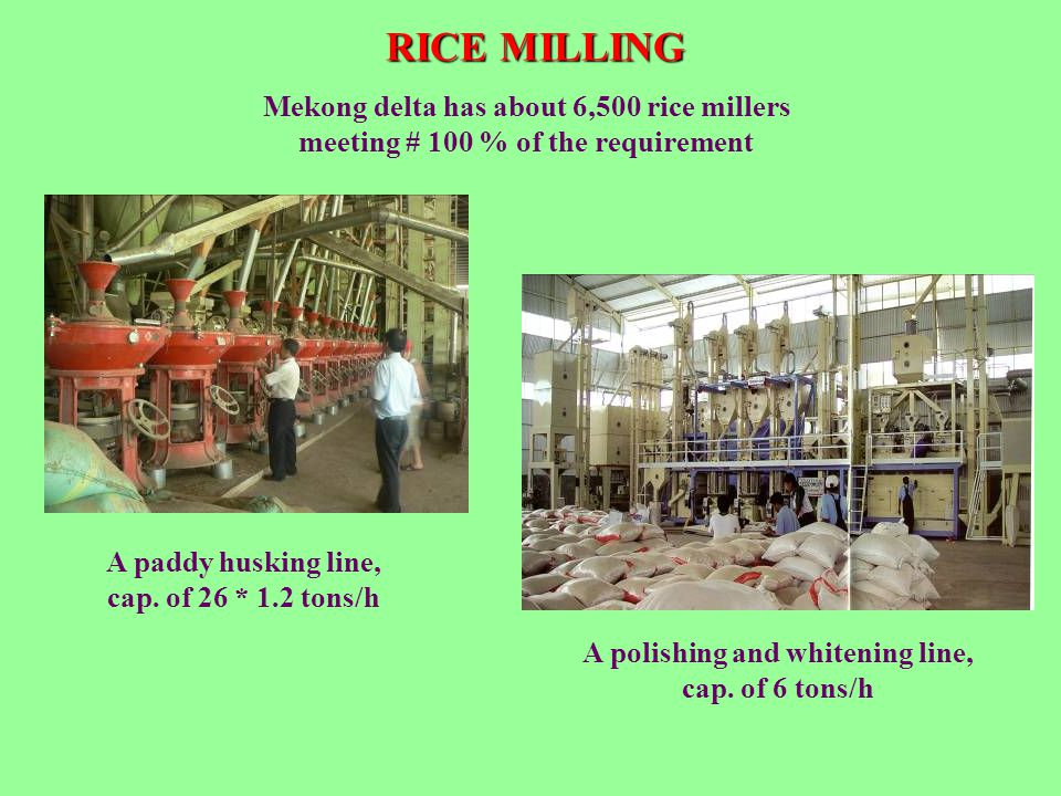 RICE MILLING A paddy husking line, cap. of 26 * 1.2 tons/h Mekong delta has about 6,500 rice millers meeting # 100 % of the requirement A polishing an