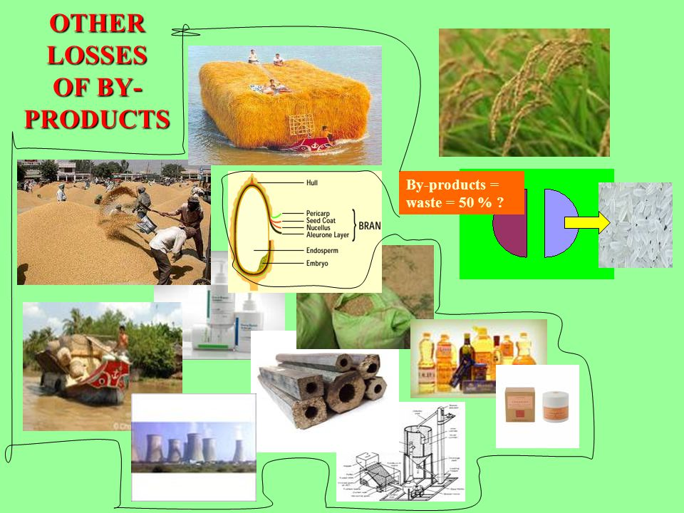OTHER LOSSES OF BY- PRODUCTS By-products = waste = 50 % ?