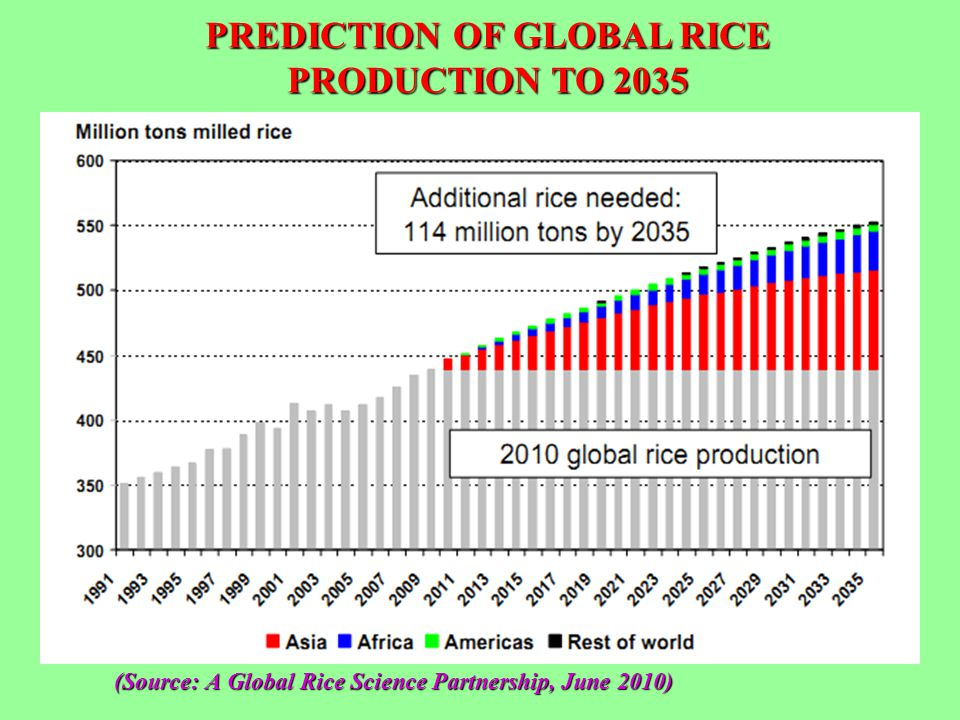 (Source: A Global Rice Science Partnership, June 2010) PREDICTION OF GLOBAL RICE PRODUCTION TO 2035