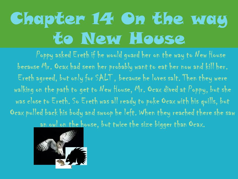 Chapter 13 Early Morning Poppy found a good spot to sleep. Then she awoke, she didn't know where Ereth was and she was beginning to get hungry. The Di