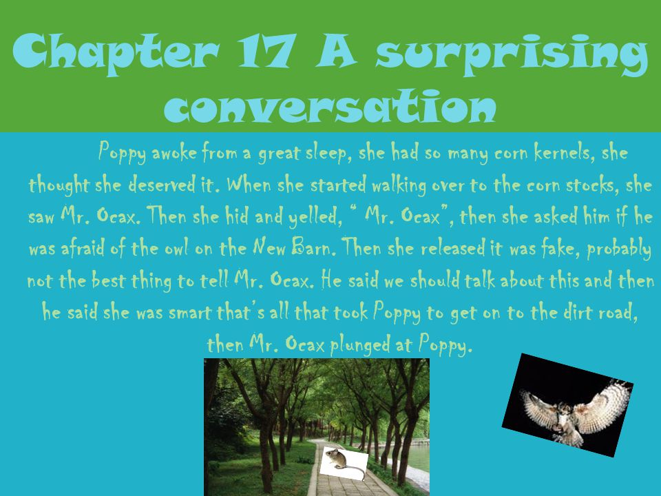 Chapter 16 The Truth at Last It was sometime before Poppy saw more movement. Then Poppy saw a cat, the cat kept sleeping. Then chickens came out. Amus