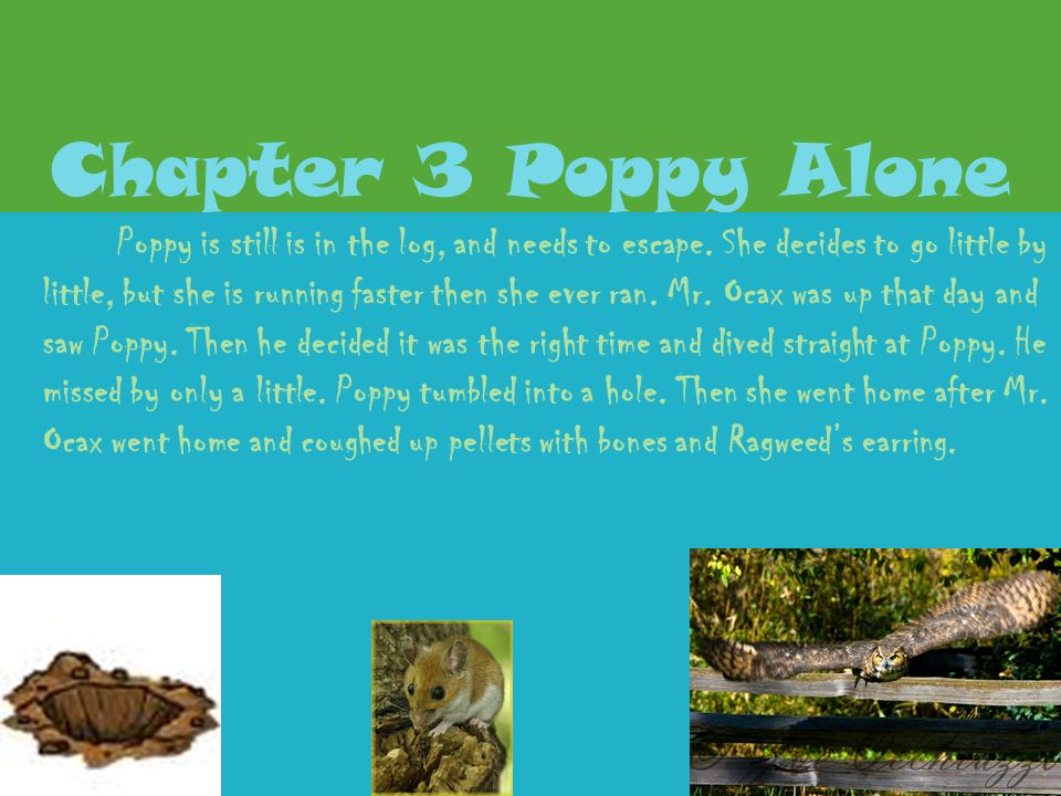 Chapter 2 Poppy Remembers Poppy had a flash back while she was knocked out, it was about Ragweed. Ragweed wanted to come without Mr. Ocax's permission