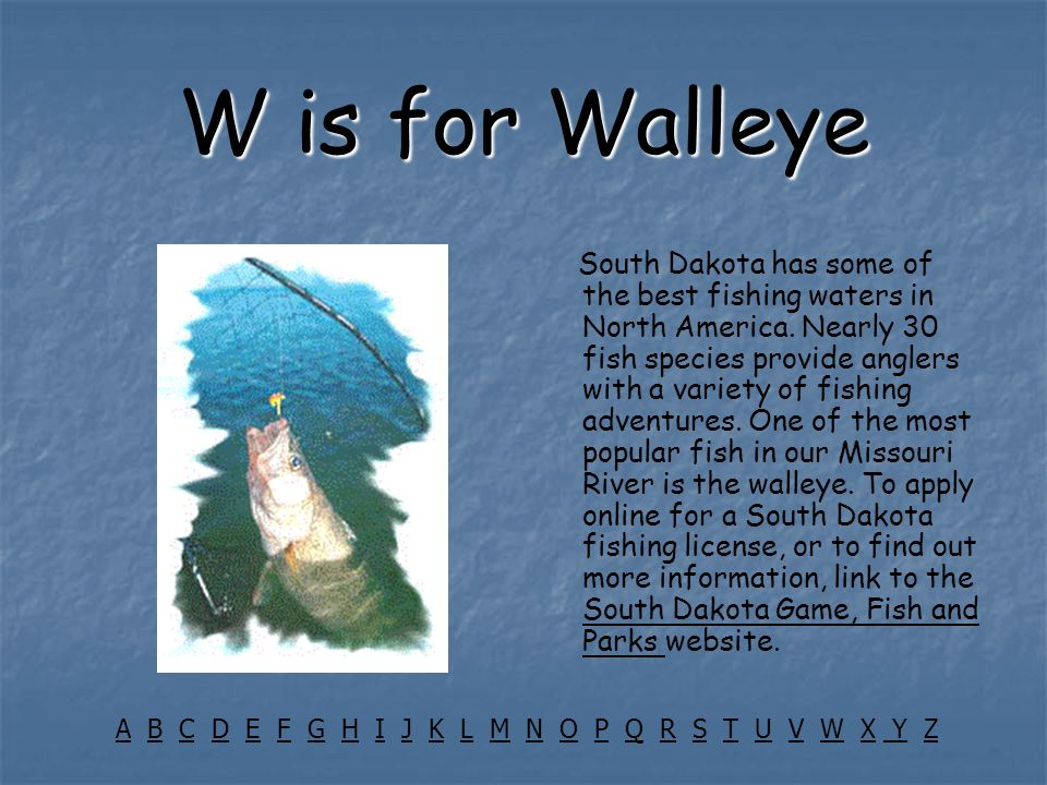 W is for Walleye South Dakota has some of the best fishing waters in North America. Nearly 30 fish species provide anglers with a variety of fishing a