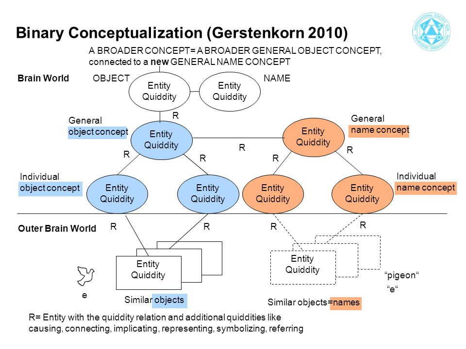 Binary Conceptualization (Gerstenkorn 2010) Entity Quiddity Entity Quiddity Entity Quiddity Entity Quiddity Entity Quiddity Entity Quiddity Entity Quiddity Entity Quiddity Entity Quiddity R R RR R RRR R A BROADER CONCEPT= A BROADER GENERAL OBJECT CONCEPT, connected to a new GENERAL NAME CONCEPT R= Entity with the quiddity relation and additional quiddities like causing, connecting, implicating, representing, symbolizing, referring Brain World Outer Brain World General object concept Individual object concept General name concept Individual name concept Similar objects=names Similar objects R Entity Quiddity OBJECTNAME pigeon e e