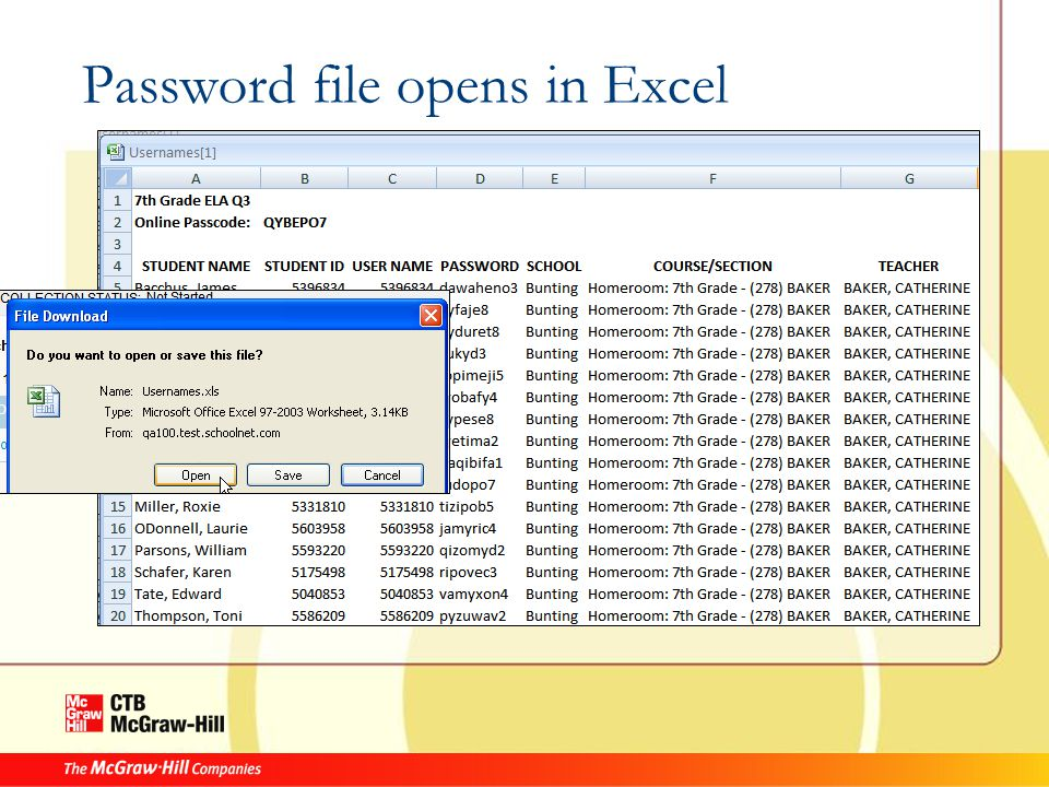 Password file opens in Excel