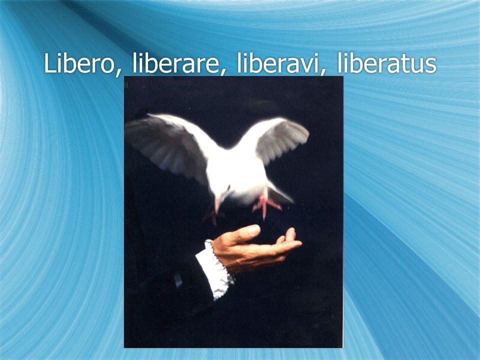 Libero, liberare, liberavi, liberatus