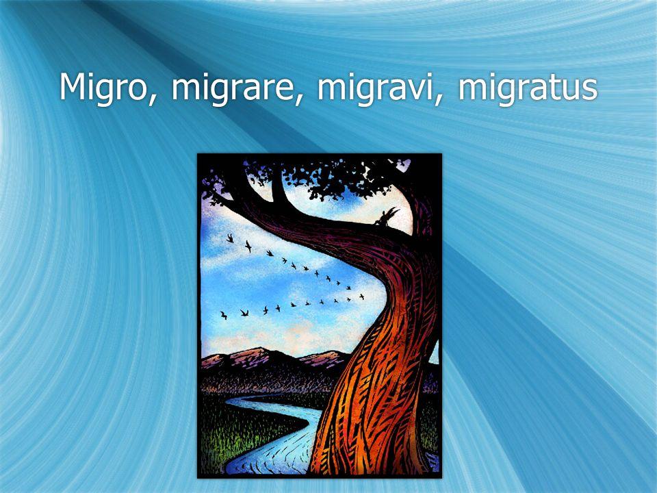 Migro, migrare, migravi, migratus