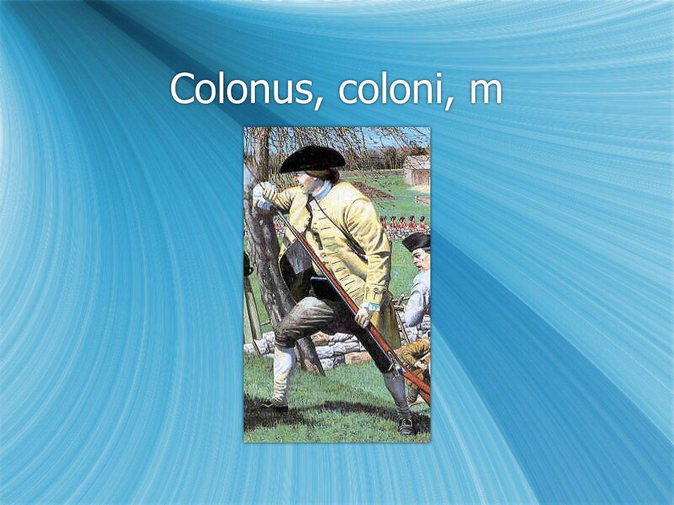 Colonus, coloni, m