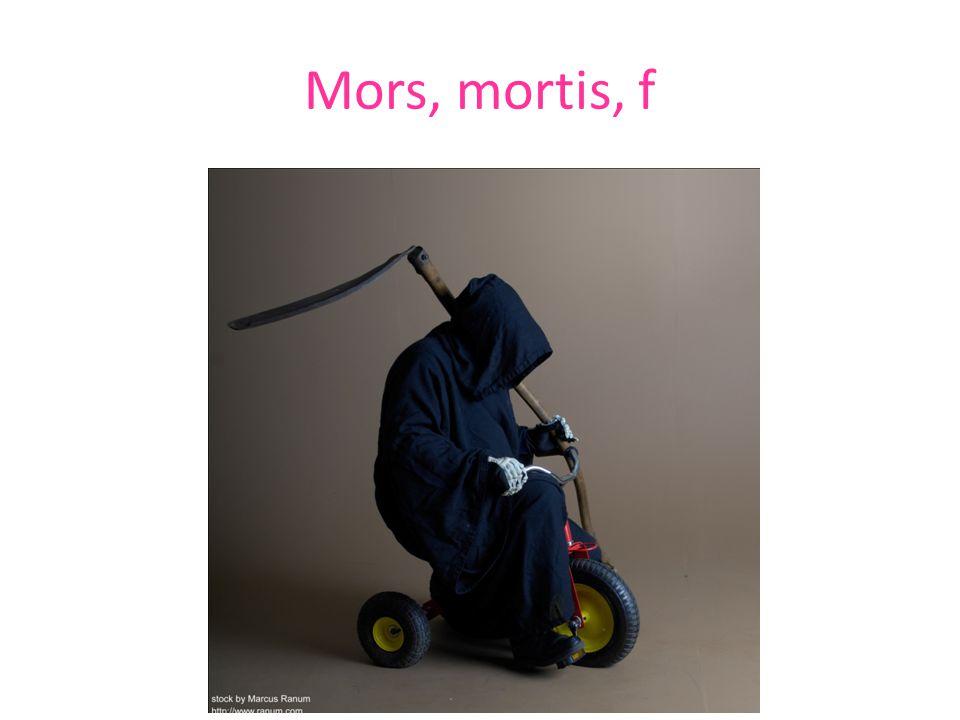 Mors, mortis, f