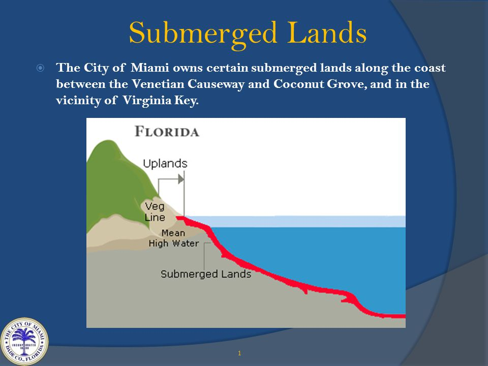 Submerged Lands 1  The City of Miami owns certain submerged lands along the coast between the Venetian Causeway and Coconut Grove, and in the vicinity of Virginia Key.
