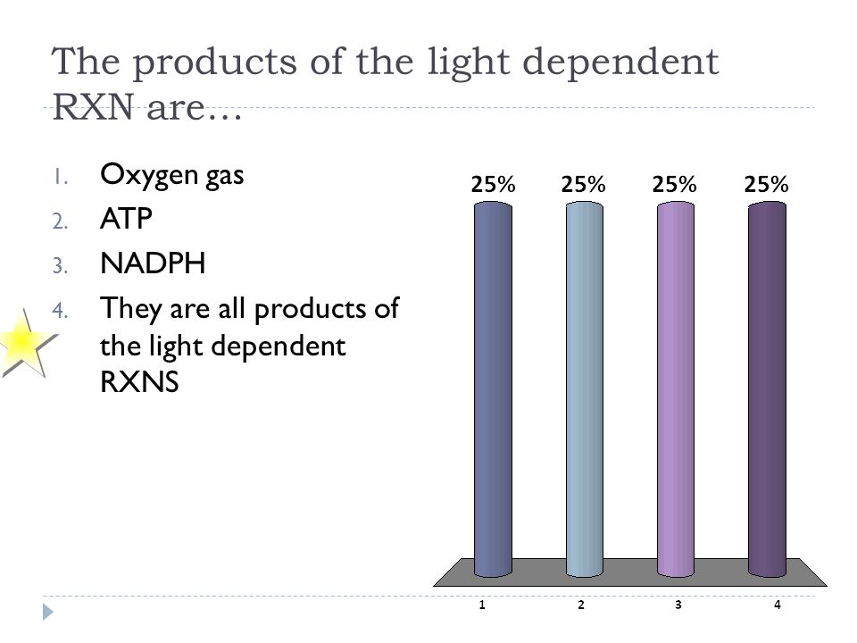 The products of the light dependent RXN are… 1. Oxygen gas 2. ATP 3. NADPH 4. They are all products of the light dependent RXNS
