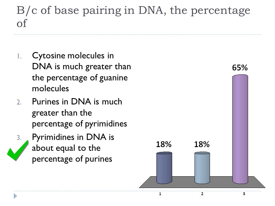 B/c of base pairing in DNA, the percentage of 1. Cytosine molecules in DNA is much greater than the percentage of guanine molecules 2. Purines in DNA