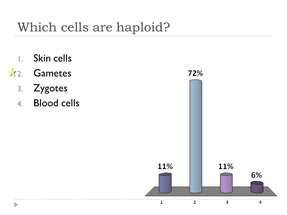 Which cells are haploid? 1. Skin cells 2. Gametes 3. Zygotes 4. Blood cells