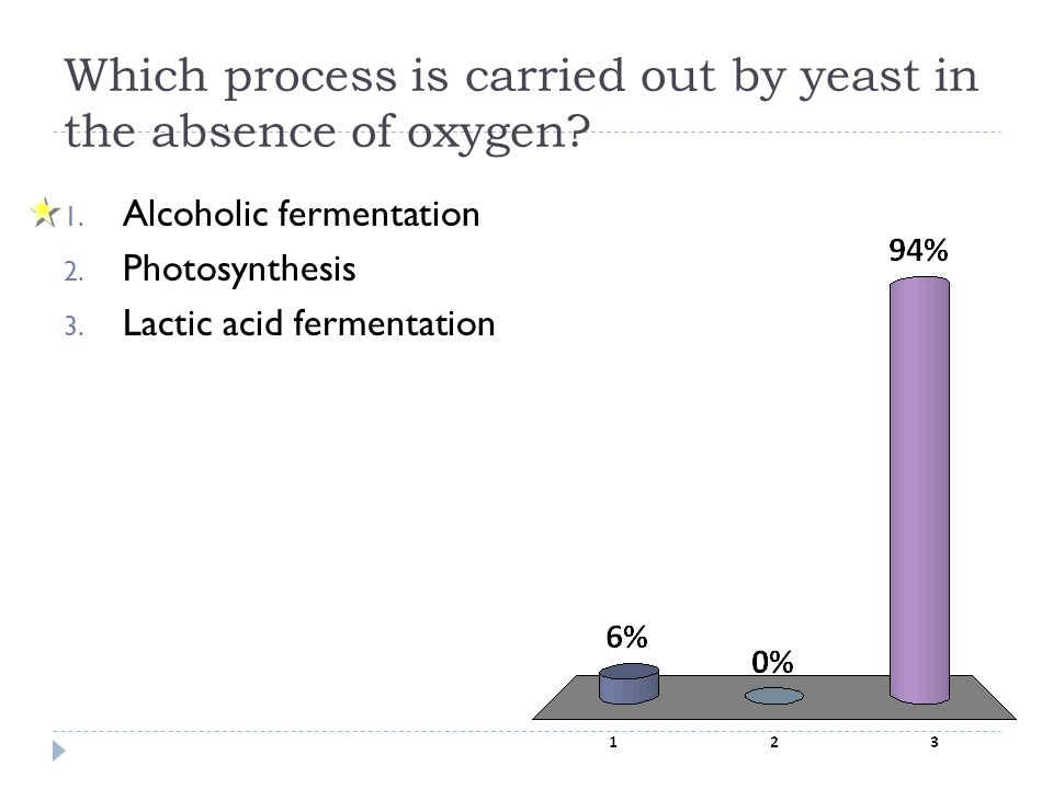 Which process is carried out by yeast in the absence of oxygen? 1. Alcoholic fermentation 2. Photosynthesis 3. Lactic acid fermentation