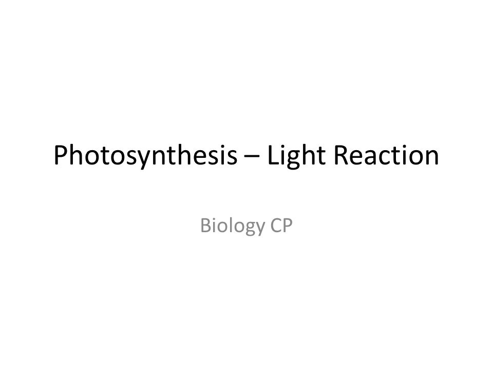 Photosynthesis – Light Reaction Biology CP