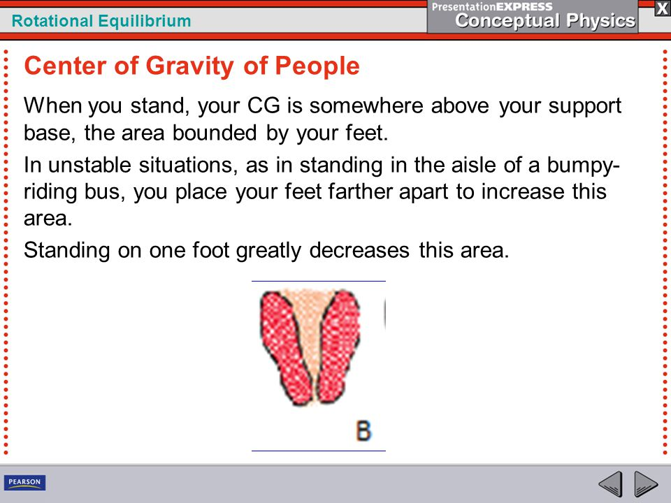 Rotational Equilibrium When you stand, your CG is somewhere above your support base, the area bounded by your feet. In unstable situations, as in stan