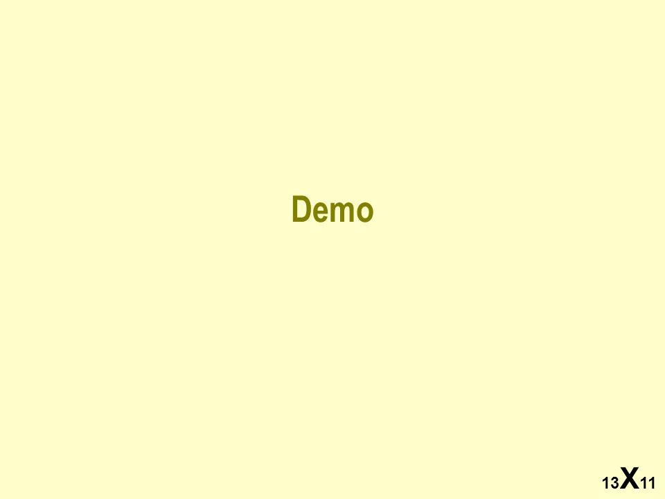 13 X 11 Demo