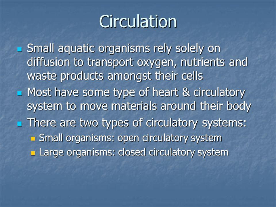 Thin skinned aka diffusion! Aquatic aka gills! Terrestrial aka lungs!