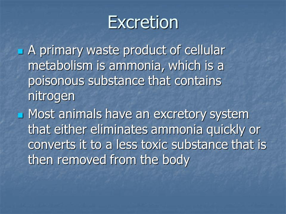Open Circulatory System Closed Circulatory System