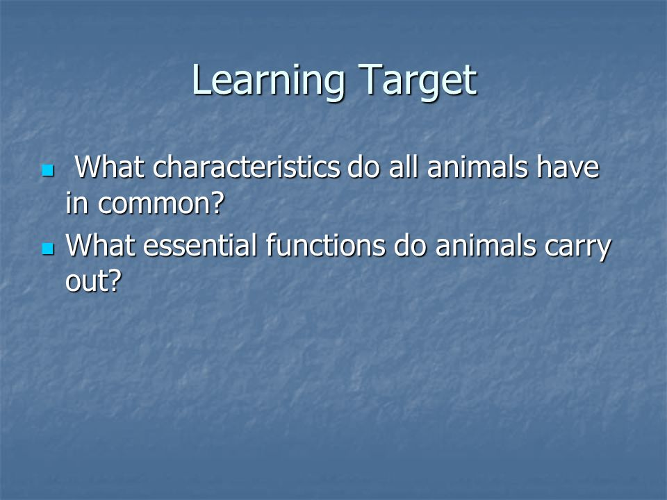 A Brief Introduction to Animals! Chapter 26 Section 1