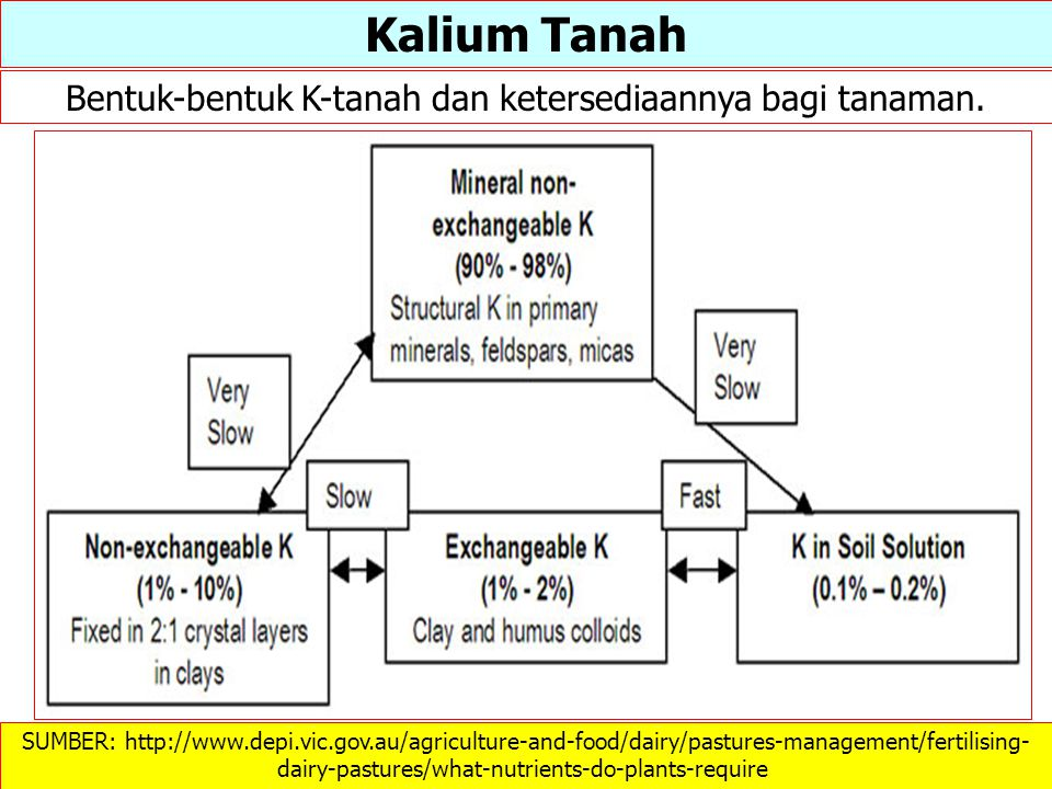 SUMBER: http://www.depi.vic.gov.au/agriculture-and-food/dairy/pastures-management/fertilising- dairy-pastures/what-nutrients-do-plants-require ‎ Kaliu