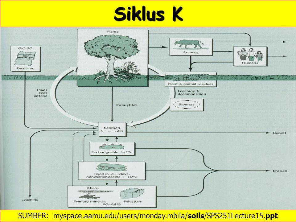 SUMBER: http://www.ipipotash.org/en/presentn/aspcwdb.php  Kalium Tanah Respon tanaman thd K dalam percobaan jangka panjang (1949-91) (MERBACH et al., 1999)