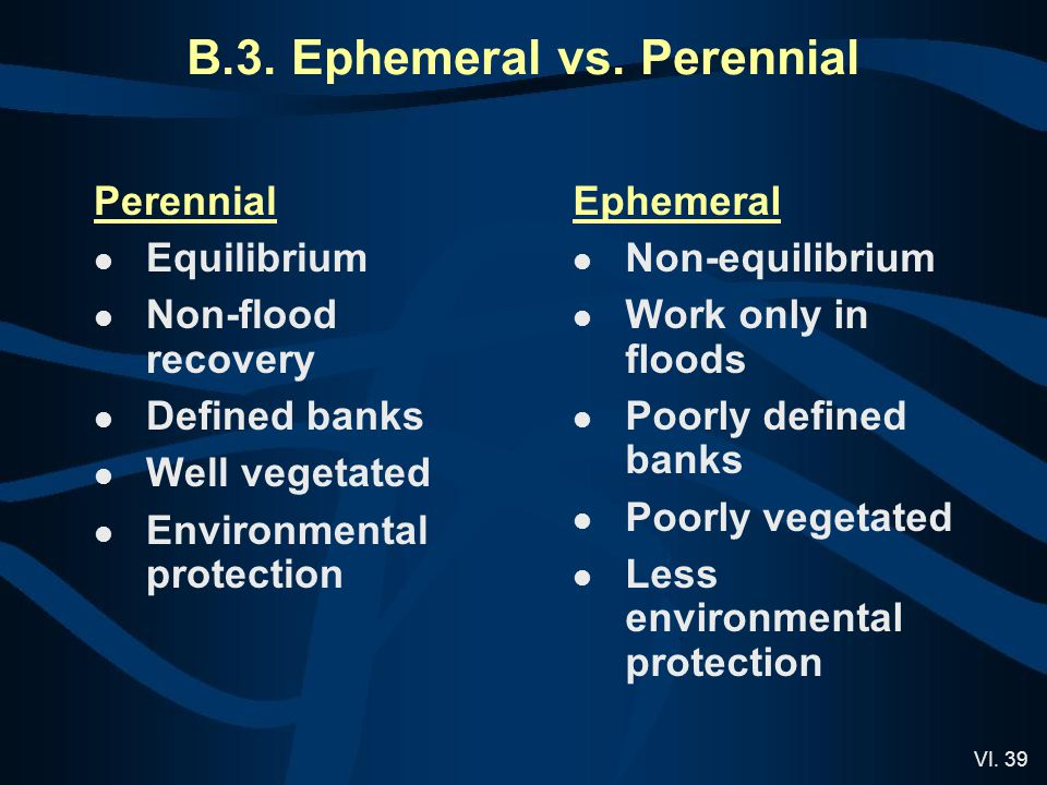 VI. 39 Perennial Equilibrium Non-flood recovery Defined banks Well vegetated Environmental protection Ephemeral Non-equilibrium Work only in floods Po