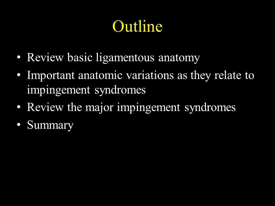 Oh, et al.Anatomic Variations & MRI of the Intermalleolar Ligament.