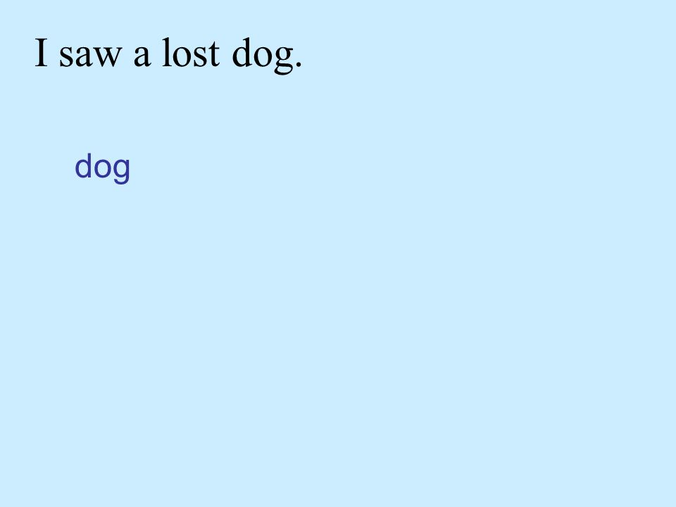 I saw a lost dog. dog