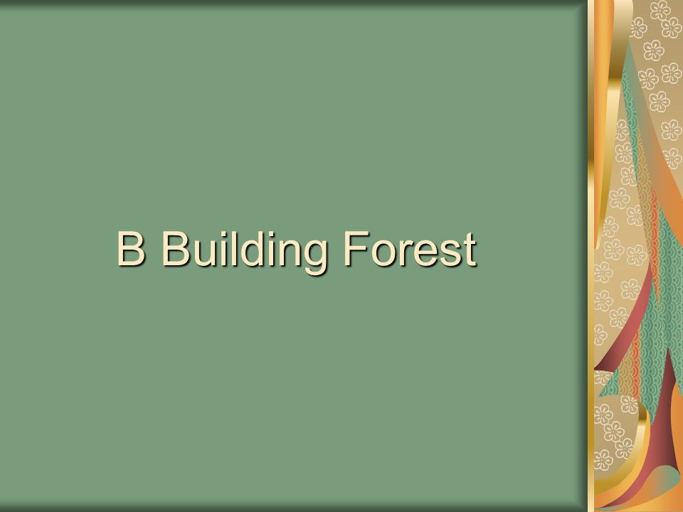 Our forest was planted by the children of B Building in 1993 with donations from local nurseries.
