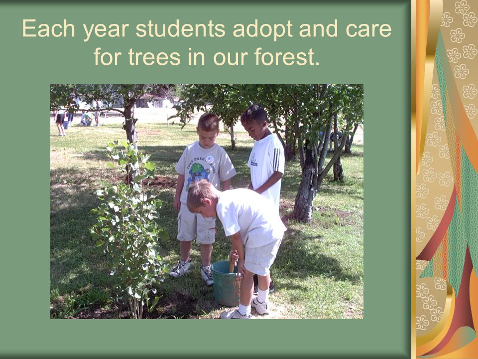Using tools donated by community businesses, the students tend to the many weeds around their trees.