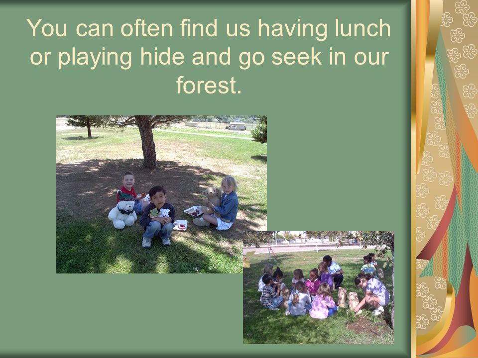 You can often find us having lunch or playing hide and go seek in our forest.