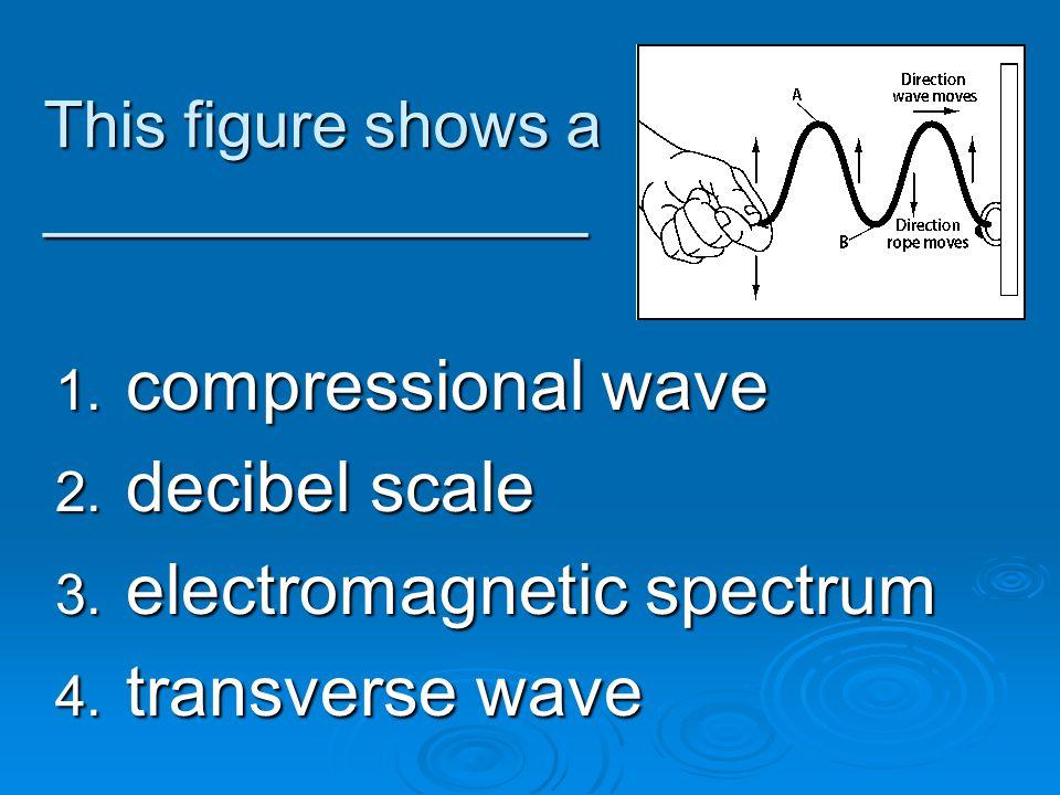 This figure shows a _______________ 1. compressional wave 2. decibel scale 3. electromagnetic spectrum 4. transverse wave