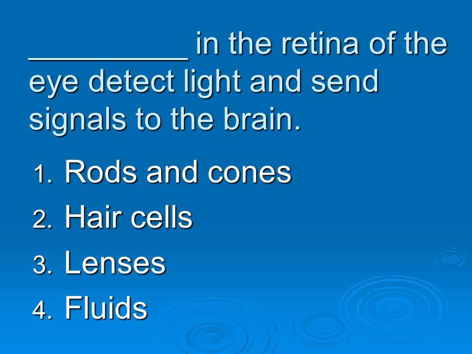 _________ in the retina of the eye detect light and send signals to the brain. 1. Rods and cones 2. Hair cells 3. Lenses 4. Fluids