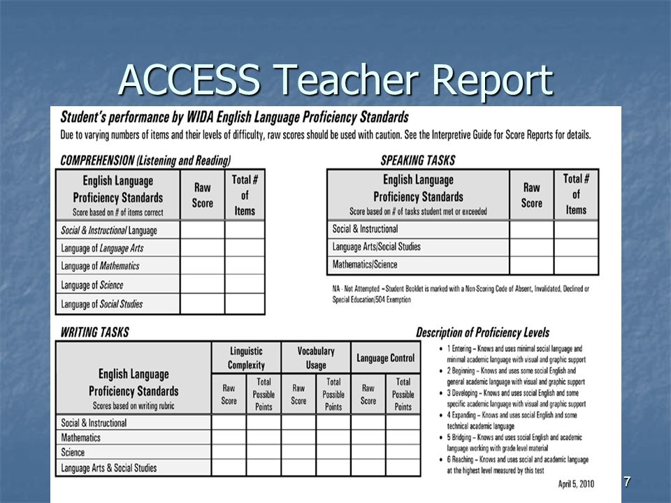 ACCESS Teacher Report 17