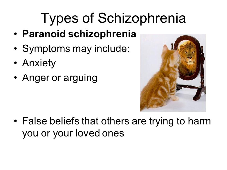Types of Schizophrenia Paranoid schizophrenia Symptoms may include: Anxiety Anger or arguing False beliefs that others are trying to harm you or your loved ones