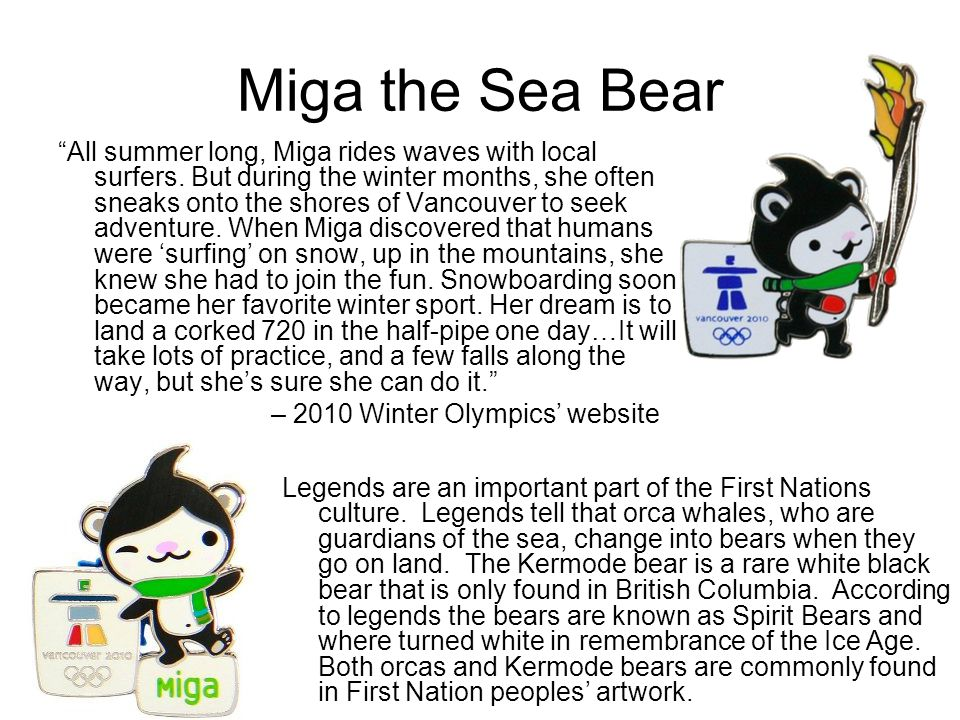 Miga the Sea Bear All summer long, Miga rides waves with local surfers.