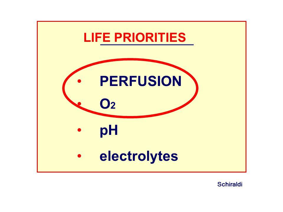 LIFE PRIORITIES PERFUSION O 2 pH electrolytes Schiraldi