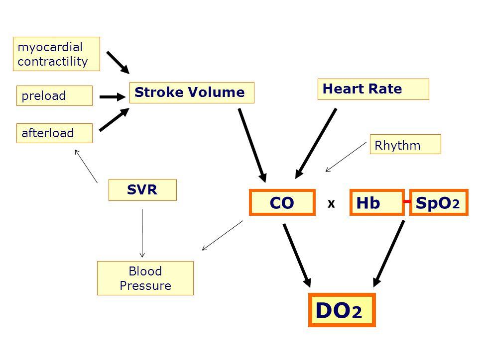 myocardial contractility preload afterload Stroke Volume Heart Rate CO SVR Blood Pressure Rhythm HbSpO 2 DO 2 x