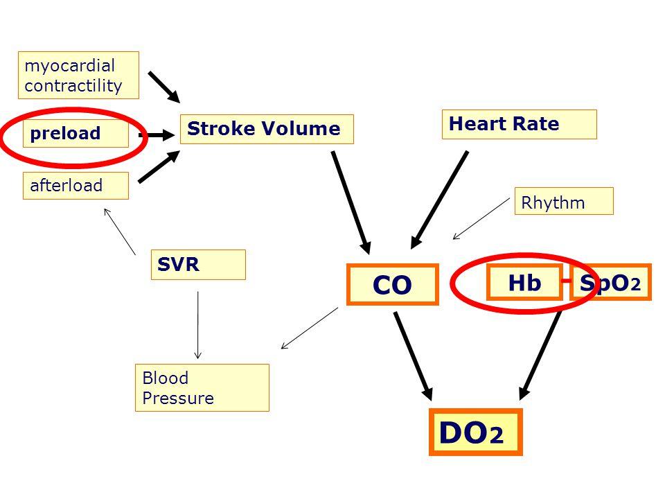 myocardial contractility preload afterload Stroke Volume Heart Rate CO SVR Blood Pressure Rhythm HbSpO 2 DO 2