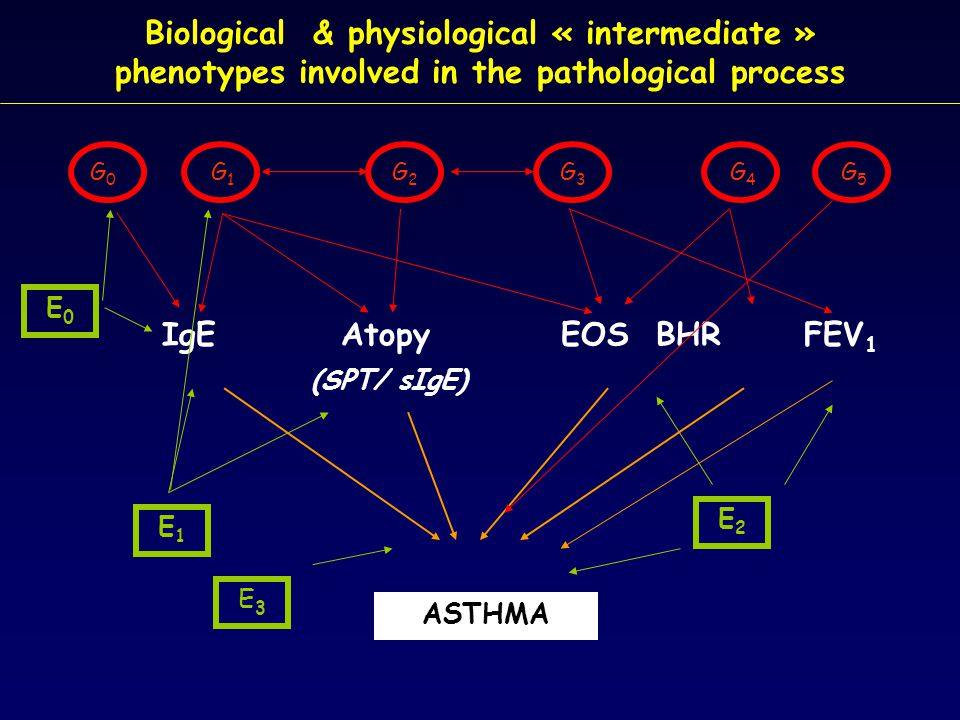 Conclusions  Achievements in asthma genetics appear both impressive and confusing.